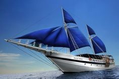 Palau Siren @ https://www.liveaboard.com/palau-siren?cid=7036  More Palau @ http://www.diveguide.com/palau-dive-travel
