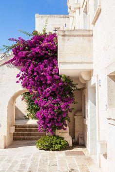 Borgo Egnazia, Puglia.