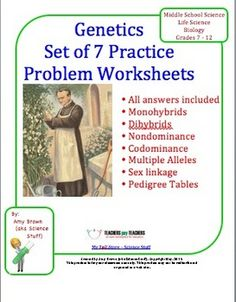 These 7 worksheets of genetics practice problems will take you through an entire unit on genetics. These were written for my standard level Biology class, but would be appropriate for middle school and high school grades, 7 - 12.