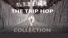 The Trip Hop Collection, Music Compilation