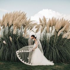 Tips For Planning The Perfect Wedding Day. Few brides and grooms found their wedding planning process to be stress-free. Many decisions must be made, and there are going to be many opinions offered, Wedding Goals, Wedding Pictures, Wedding Planning, Hair Pictures, Hair Images, Marriage Pictures, Perfect Wedding, Dream Wedding, Wedding Day