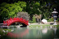 Jardin Japones - Buenos Aires