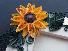photo Floareasoarelui3.jpg
