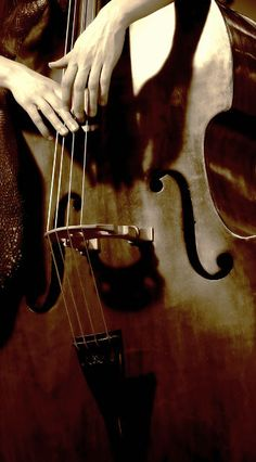 Cello by clarita.