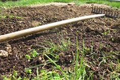 Fall lawn repair tips