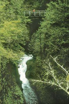 My Public Lands Roadtrip: Cascade-Siskiyou National Monume