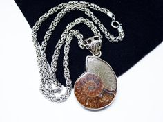 New Listings Daily - Follow Us for UpDates -  Snail Fossil Pendant - Choker Necklace - Fossilized Ammonite #Opalized  - Sterling Silver - Brown Snail -  Natural #Vintage Jewelry  Description & Style:   This is an lovely ... #vintage #jewelry #teamlove #etsyretwt #ecochic #ammonie #opalized #thejewelseeker ➡️ http://etsy.me/2lJV2qt