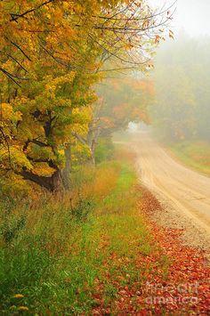 Glimpse Of Autumn  Photograph by Terri Gostola in  FineArt America-