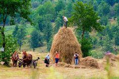 La fan in Maramures - © foto: Costel Ciobanu