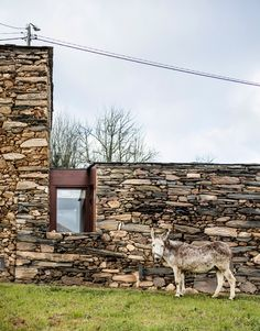 Stone wine cellar in Spain converted into a home by Cubus Arquitectura