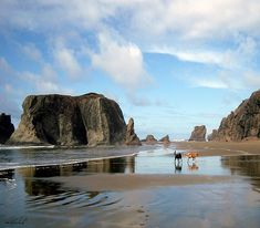 Bandon Beach Oregon Doodle Heaven by Michele Avanti  In winter, one dreams of spring and going to the beach again! This was one of those magical days. #bandon, #beach, #labradoodles