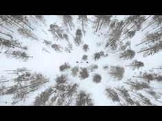 Visit Oulu - 5 Characters: Winter in Rokua Film - YouTube