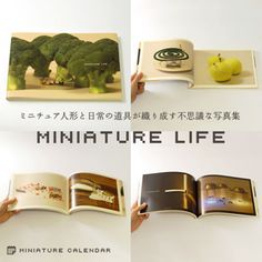MINIATURE LIFE - Full year calendar with miniature pictures for each day. Maybe for use as writing prompts?