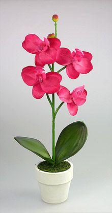 carrosse pvc transparent avec dragées fuchsia rose ivoire