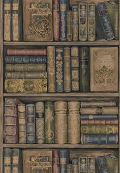 Book wallpaper from Sherwin Williams