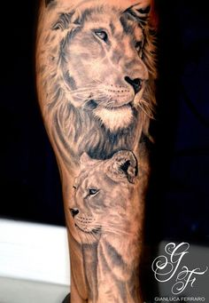Two lion heads form a full leg sleeve in this lion tattoo idea for men. The top lion is a male with a shaded, watchful face, and a billowing, detailed mane. Beneath him, a female lion head fades into the flesh in shadowed black and grey inking. Leo Tattoos, Bild Tattoos, Animal Tattoos, Body Art Tattoos, Tattoos For Guys, Tatoos, Tattoos Of Lions, Couple Tattoos, Lion And Lioness Tattoo