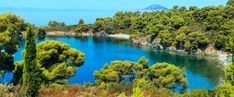 What better place to spend your holiday than on the beach in Greece? Here is our article on best things to do and where to go when in the Sithonia Peninsula! Stuff To Do, Things To Do, Restaurant Food, Beach Hotels, Heaven On Earth, Where To Go, Resorts, Night Life, Greece
