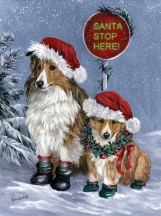 Shetland Sheepdog Santa  by Suzanne Renaud