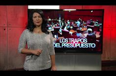 Patricia Solano: Los trapos del presupuesto