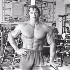 Bodybuilding workouts to Speed Up the Muscle Building Process Arnold Schwarzenegger Training, Arnold Schwarzenegger Bodybuilding, Biceps, Arnold Bodybuilding, Arnold Photos, Frank Zane, Pumping Iron, Workout Log, Mr Olympia