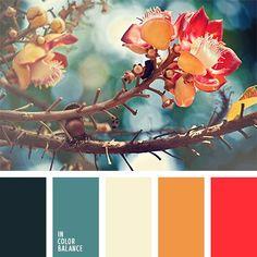 anaranjado y rojo, color crema, color crema cálido, combinación de colores para primavera precoz, paleta de colores para primavera, paleta de colores para reformar un piso, paletas de diseño, rijo y turquesa, selección de colores para diseñadores, turquesa oscuro, turquesa y