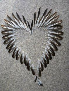 collagecab valentines crafts heart shape right which make want will easy that you are day 25 Heart Shape Crafts for Valentines Day Which Are So Easy That You Will Want To Make One Right You can find Heart art and more on our website Feather Crafts, Feather Art, Bird Feathers, Feather Wreath, Turkey Feathers, Pheasant Feathers, White Feathers, Heart In Nature, Heart Art