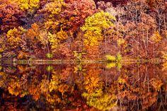beautiful reflections :-)