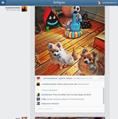 Finally! You can now view your Instagram feed on your computer.