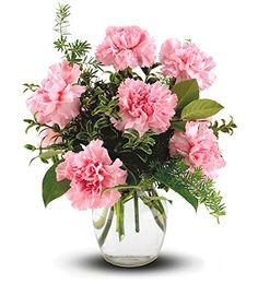 Flowers - Teleflora's Pink Notion Vase - http://yourflowers.us/flowers-telefloras-pink-notion-vase/