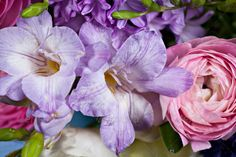 Realistic Graphic DOWNLOAD (.ai, .psd) :: http://jquery-css.de/pinterest-itmid-1006903605i.html ... bunch of spring flowers ...  Ranunculus, arrangement, beautiful, blossom, bouquet, bunch, color, flowers, freesias, freshness, gift, hyacinths, nature, objects, spring, table, tulips  ... Realistic Photo Graphic Print Obejct Business Web Elements Illustration Design Templates ... DOWNLOAD :: http://jquery-css.de/pinterest-itmid-1006903605i.html