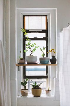 Bathroom Remodel On A Budget, Bathroom Remodel Small, Bathroom Remodel DIY, Bathroom Remodel Ideas Vanity, Bathroom Remodel Ideas Master. Decoration Inspiration, Interior Inspiration, Bathroom Inspiration, Decor Ideas, Home Interior, Interior And Exterior, Window Plants, Potted Plants, Privacy Plants