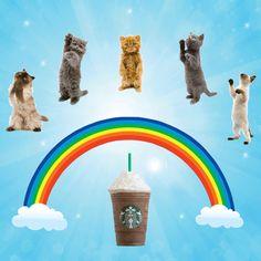 Starbucks Releases 21 Branded Frappuccino GIFs With Popkey App Adweek Starbucks Menu, Starbucks Coffee, Bad Morning, Coffee Company, Frappuccino, Trivia, Animated Gif, 21st, Design Inspiration