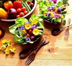 Online kertészeti magazin, kert, kertészet, otthon, növény, dísznövény