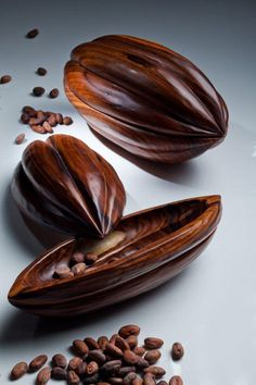 Gabriela Flores | Cartier Women's Initiative Awards - Hand carved Cacaos by Bolivian artisans. Amazing company! Chocolate Shop, Chocolate Color, Decadent Chocolate, Chocolate Factory, Chocolates, Coffee Pack, Fruit Photography, Theobroma Cacao, Tropical Fruits