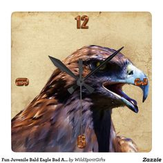 Fun Juvenile Bald Eagle Bad Attitude Wildlife Square Wall Clocks