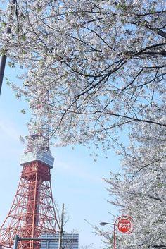 Tokyo Tower Tokyo Tower, City Landscape, Japan Travel, Fair Grounds, Building, Travelling, Buildings, Construction