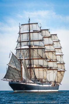 Photos of Tall Ships-Historic Sailing Ships - Grand Voiliers - Windjammers - Fig. - Photos of Tall Ships-Historic Sailing Ships – Grand Voiliers – Windjammers – Figurehead Carvi - Tall Ships Race, Old Sailing Ships, Sailing Classes, Moby Dick, Bateau Pirate, Naval, Wooden Ship, Sail Away, Ship Art