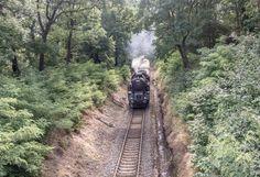 praha stromovka vlak
