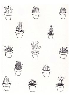 Cactus colouring in page Textures Patterns, Print Patterns, Floral Patterns, Kaktus Tattoo, Graffiti, Illustration Blume, Cactus Illustration, Whatsapp Wallpaper, Belle Photo