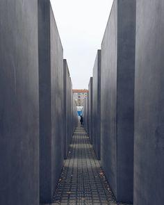 L'Olocausto è una pagina del libro dell'Umanità da cui non dovremo mai togliere il segnalibro della memoria. {Primo Levi}