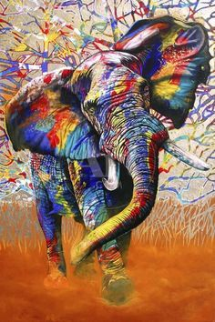 & Colours& Graphic Art Print on Canvas East Urban Home Size: 66 cm H x cm W x cm D - Size: 66 cm H x Colorful Elephant, Elephant Art, African Elephant, African Animals, Elephant Paintings, Colorful Animal Paintings, African Art Paintings, Colorful Animals, Cross Paintings