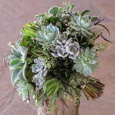 Hand-tied bridal bouquet with Echeveria 'frosty,' Echeveria 'Violet Queen,' Echeveria coccinea, Mammillaria gracilis fragilis, green leucadendron, seeded eucalyptus and agonis