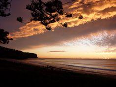 Newport Beach , Sydney Newport Beach, Beaches, Sydney, Australia, Celestial, Sunset, Country, Outdoor, Outdoors