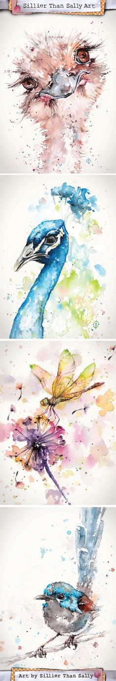 Water Colour Bird Art By Sillier Than Sally. www.sillierthansally.com Watercolor Bird Prints & Commissions Available. Emu, Peacock, Dragonfly, Fairy Wren.