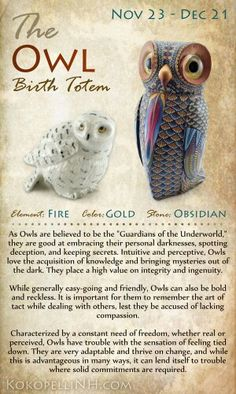 Are you the mysterious Owl? The Owl Native American Birth Totem represents those born from Nov 23 - Dec Owls love knowledge and freedom. Visit our website to read more about this birth totem. ~ another spirit animal. Native American Wisdom, American Indians, Native American Astrology, Native American Animals, Native American Spirituality, Native American Cherokee, American Symbols, Yen Yang, Animal Spirit Guides
