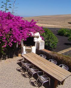 Kalindi Rural House with free Yoga in Lanzarote - UPDATED 2020 - Holiday Home in Teguise - Tripadvisor Rural House, Outdoor Tables, Outdoor Decor, Free Yoga, Sun Lounger, Trip Advisor, Villa, Outdoor Furniture, Places