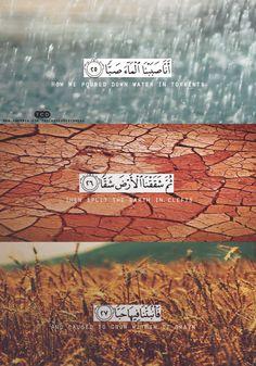 Quran-e-Kareem Quotes 08 Beautiful Quran Quotes, Quran Quotes Inspirational, Quran Quotes Love, Arabic Quotes, Islam Allah, Islam Quran, Muslim Quotes, Religious Quotes, Islam And Science