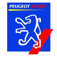I am looking for the following Peugeot rally parts: Bilstein front suspension for a 205 or 206 even 306 or 309 would do. LSD for MA type gearbox. Rear Bilstein Suspension 206 Contact JP Ruth...