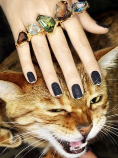 This photo has it all. Matte nails, a big cat, bling...