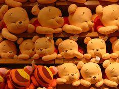coleção urso pool - Pesquisa Google